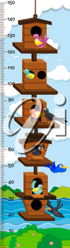 Growth mearsuring chart with birds in birdhouse illustration