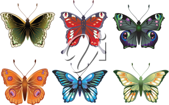 Royalty Free Clipart Image of Colourful Butterflies