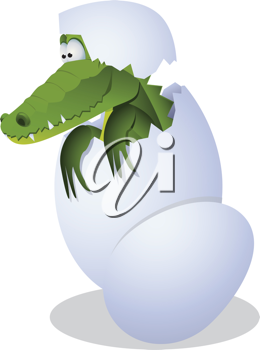 Royalty Free Clipart Image of a Hatching Alligator