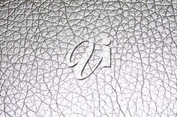 Royalty Free Photo of Leather