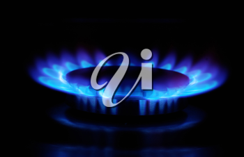 Royalty Free Photo of the Flames on a Gas Stove