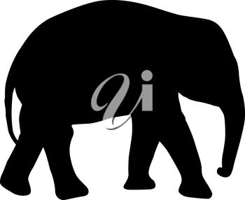 Silhouette of an African baby elephant on a white background.