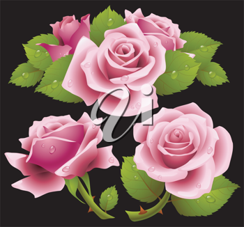 Royalty Free Clipart Image of Roses