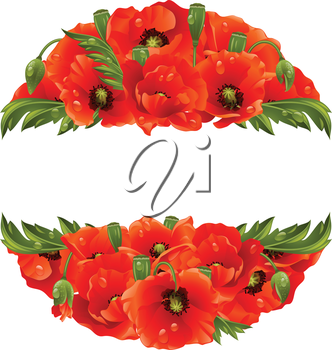 Vector circle frame with red poppies isolated on white background