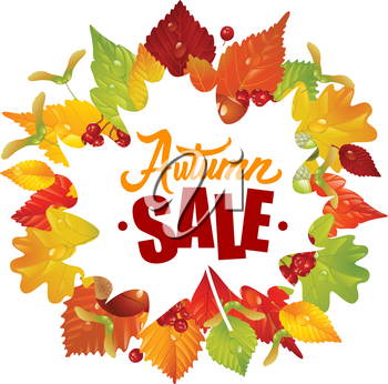 Vector Frame with Fall Leaves, Chestnut, Acorn and Ashberry. Lettering of Autumn Sale Text. Season Discount Banner Isolated on White Background