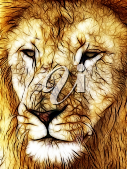 Royalty Free Photo of an Illustration of a Lion