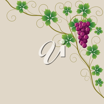 Royalty Free Clipart Image of a Grapevine on a Beige Background