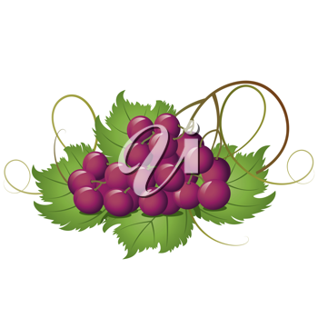 Royalty Free Clipart Image of Grapes on a Leaf