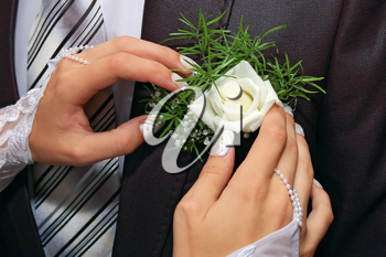 a hands fiancee on the buttonhole of groom