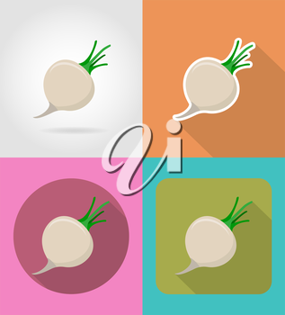 turnips vegetable flat icons with the shadow vector illustration isolated on background