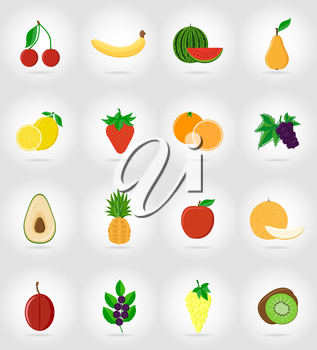 fruits flat set icons with the shadow vector illustration isolated on background