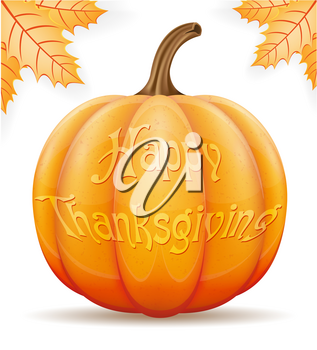pumpkin thanksgiving vector illustration isolated on white background