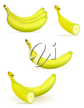 banana ripe yellow and a some green vector illustration isolated on white background