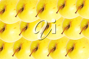 Yellow apples as a background