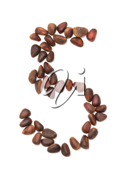 number five of the pine nuts on a white background