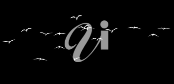 silhouette of a flock of birds on a black background