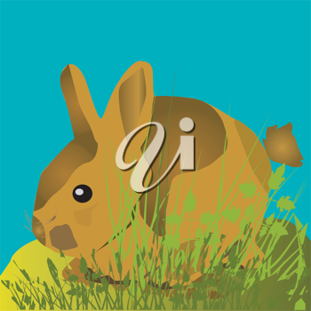 Royalty Free Clipart Image of a Small Rabbit