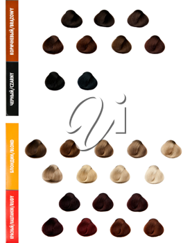 Royalty Free Photo of a Palette of Hair Samples