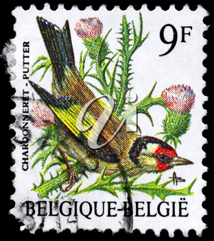 BELGIUM - CIRCA 1985: A Stamp shows image of a Goldfinch from the series Birds, circa 1985