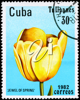 CUBA - CIRCA 1982: A Stamp shows image of a Tulip with the inscription Jewel of Spring, from the series Tulips, circa 1982