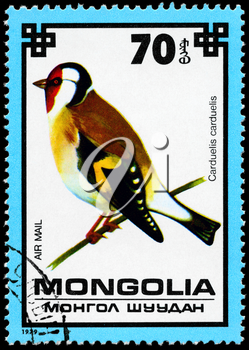 MONGOLIA - CIRCA 1979: A Stamp shows image of a Goldfinch with the designation Carduelis carduelis from the series Protected Birds, circa 1979