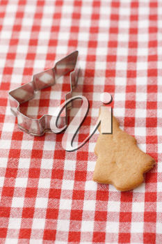 Royalty Free Photo of a Gingerbread Cookie