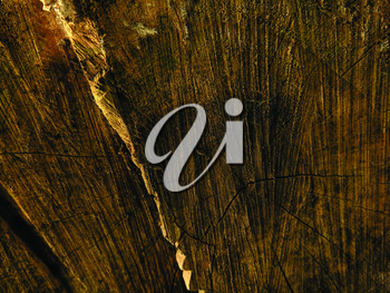 Royalty Free Photo of a Wooden Background