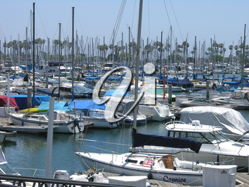 Royalty Free Photo of a Busy Marina