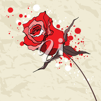 Royalty Free Clipart Image of a Grunge Red Rose on Crumpled Paper