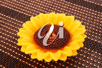 Royalty Free Photo of a Sunflower Candle