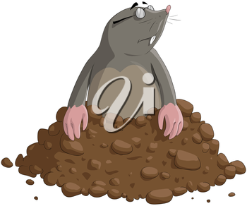 Royalty Free Clipart Image of a Mole
