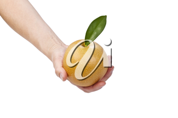Single hand holding apple pear on white background