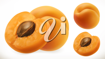 Apricot. Fresh fruit 3d realistic vector icon