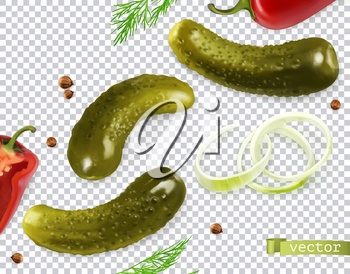 Pickled cucumbers. Gherkin, dill, pepper, onion, coriander seeds. 3d vector realistic vegetables