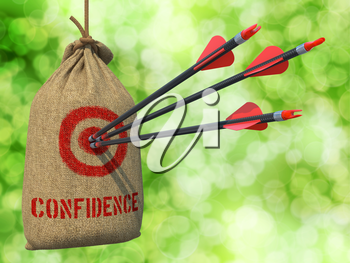 Confidence - Three Arrows Hit in Red Target on a Hanging Sack on Green Bokeh Background.