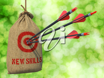 New Skills - Three Arrows Hit in Red Target on a Hanging Sack on Natural Bokeh Background.