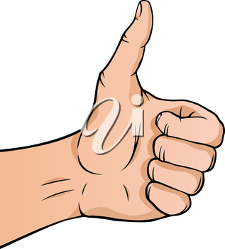 Royalty Free Clipart Image of a Hand gibg Thumb Up