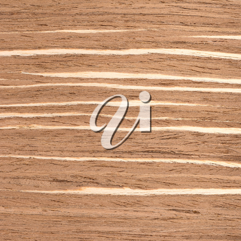 Fragment background of wooden texture for designers
