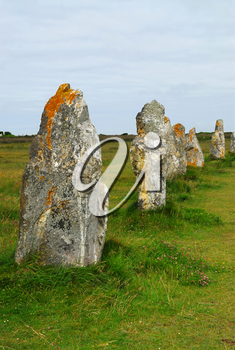 Row of prehistoric megalithic monuments menhirs in Brittany, France