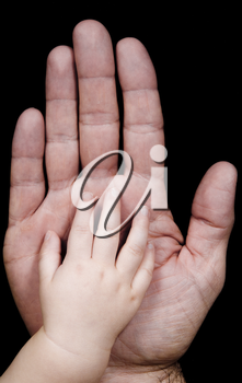 two hands with father and his baby son