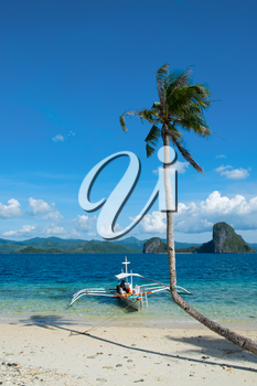 Lone curved palm tree and boat on the seashore