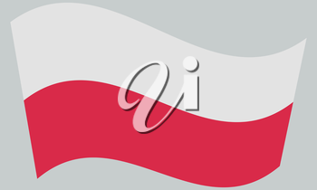 Flag of Poland waving on gray background