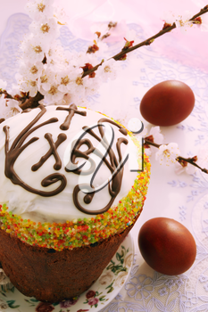 Slavic Easter cake with eggs and apricot flowers