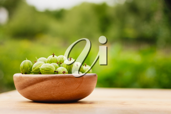 Old Wooden Bowl Filled With Succulent Juicy Fresh Ripe Green Gooseberries On An Old Wooden Table Top. Green Background