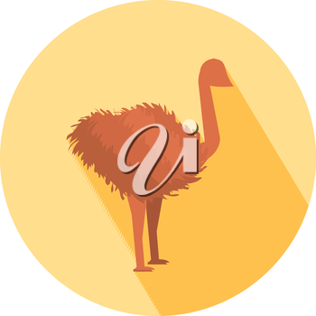 Ostrich icon with shadow in flat design