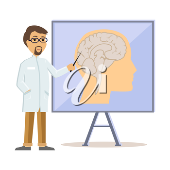 Doctor showing human brain flat design. Human head, human anatomy, medicine care, medical health human, hospital and professional specialist illustration