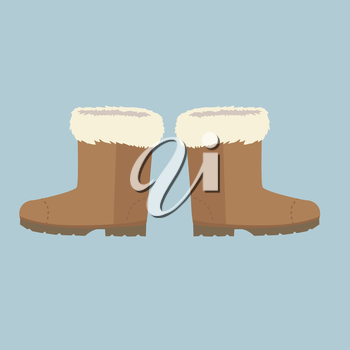 Winter shoes. Winter shoes isolated. Felt boots. Leather shoes. Boots without shoelace. Pair of shoes. Winter boots. Winter boot on a isolated background. Mountain boot. Vector shoes, boot