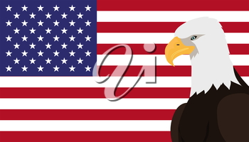 Bald eagle vector. USA national bird symbol and flag for patriotic national symbolic, patriotic posters, elections illustrating. Big eagle witn white fead on American flag background. 4 july