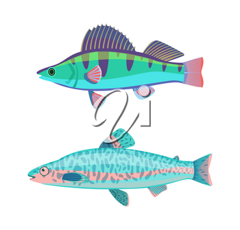 Jack Dempsey blue marine fish set. Creature with dark lines and spots on back zebra type. Limbless animal with gills isolated on vector illustration