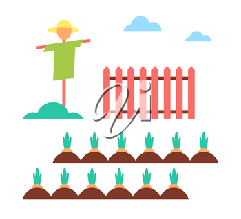 Scarecrow field protector set wooden fence and plantation with growing carrots. Farming measures to save crops and vegetables from crows icons vector